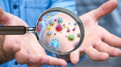 Bakterien und Keime auf Händen